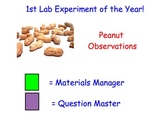 Making Observations (Scientific Method) - Lesson Presentations, Experiments...