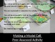 Making a Model Cell  Peer Assessed Activity