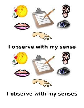 Making observations with my senses and recording data K-1s