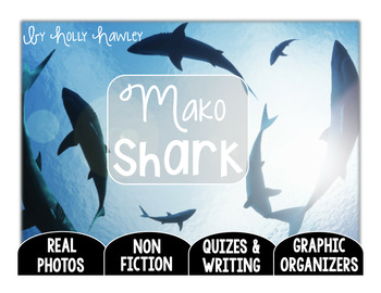 Mako Shark-A Research Project