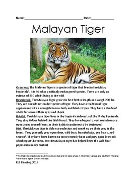 Malayan Tiger - Endangered Species - lesson review article information questions
