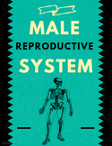 Male Reproductive System in Humans (Biology Lecture)