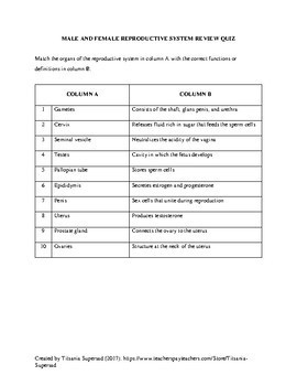 Male and Female Reproductive System in Humans (Worksheet) by ...