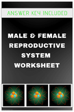 Male and Female Reproductive System in Humans (Worksheet)