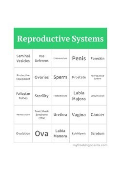 Male and Female Reproductive Systems Bingo
