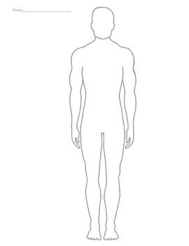 Male body silhouette