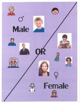 Male or Female File Folder Sort