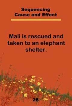 Mali Educational Activity Cards