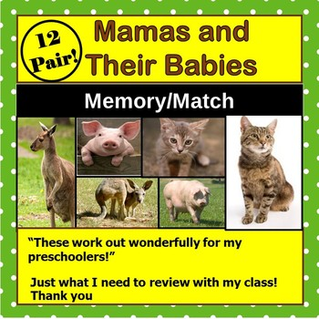 Animal Mothers and Their Babies Memory Match