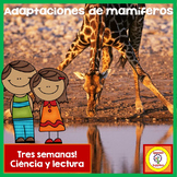 Mamíferos  - Spanish Mammals 3 week Unit