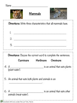 Mammal Assessment
