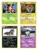 "Mammal ""Pokemon"" Awards"