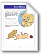 Mammal Babies and Body Parts