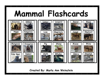 Mammal Flashcards