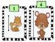 Mammal Measurement Center (Fourths and Halves)