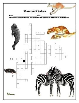 Mammal Orders Crossword Puzzle