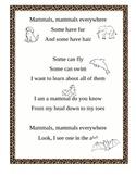 Mammal Poem