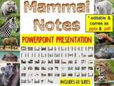 Mammal PowerPoint Presentation (for Biology or Zoology)