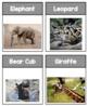 Mammal Printable