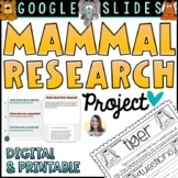 Mammal Research Project   Google Slides Distance Learning