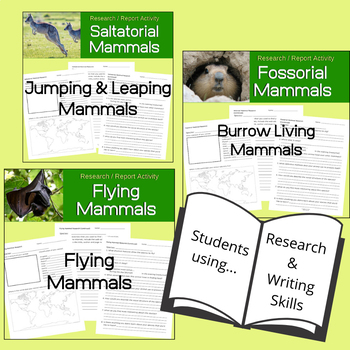 Mammal Research and Report Activities | Behavioral Bundle
