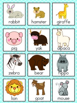 Mammal Vocabulary Cards