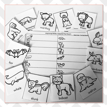 Mammal Vocabulary Practice - Write The Room