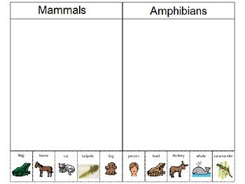 Mammal and Amphibian Picture Sort