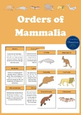 Mammalian Orders Pack