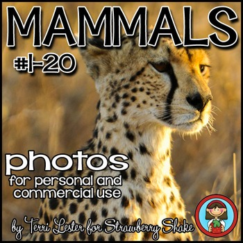 Photos Photographs Mammals #1 Science and Nature Personal and Commercial Use
