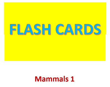 Mammals 1 Flash Cards