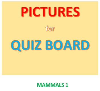 Mammals 1 Picture Set for Quiz Board