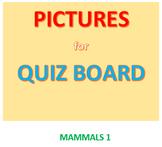 Mammals 1 Picture Set for Quiz Board