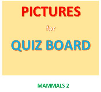 Mammals 2 Picture Set for Quiz Board