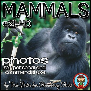 Photos Photographs Mammals #2  Science and Nature Personal