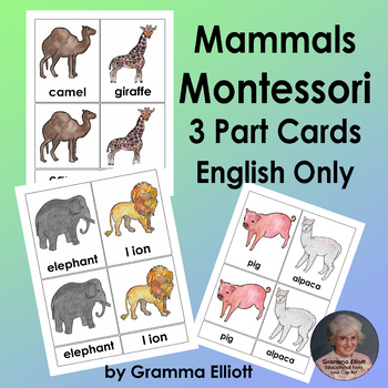 Mammals 3 Part Cards Montessori Style in English Only