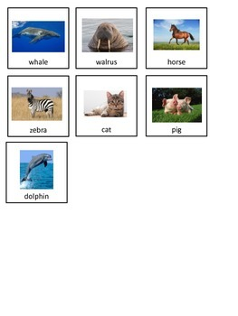 Mammals Adapted Book