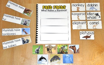 "Mammals Adapted Book--""A Camel is a Mammal"" (w/Real Photos)"