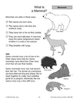 Mammals Are Vertebrates