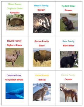 Mammals Battle Version 1