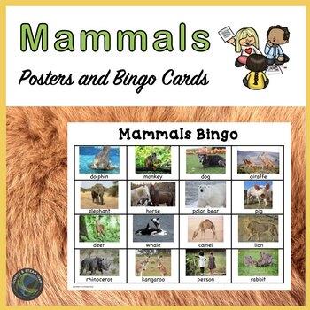 Mammals Bingo and Posters