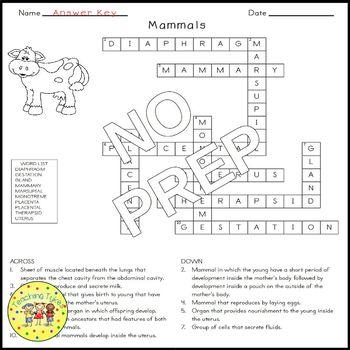 Mammals Crossword Puzzle