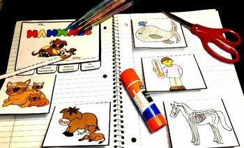 Mammals Bundle - Lesson Plan, Photos, Worksheets and Activities