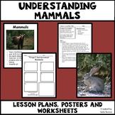 Mammals - Characteristics of Animals Leson Plan, Photos, Poster