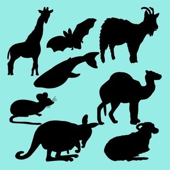 Mammals Realistic Clip Art Color Black Line and Silhouettes