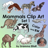 Mammals Realistic Clip Art Color Black Line and Some Silhouettes