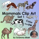 Mammals Clip Art Set 1   Color Black Line and Some Silhouettes  Semi Realistic