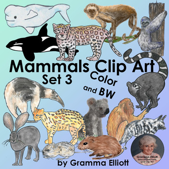 Mammals Clip Art Set 3  Semi Realistic  Color Black Line and Silhouettes
