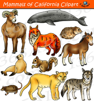 Mammals Clipart - California