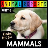 Mammals - Dogs Cats Polar Bears Rabbits Sea Lions - Nonfiction Informational